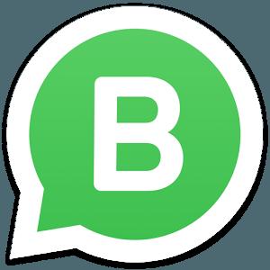 business whatsapp version