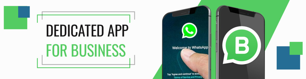 dedicated WhatsApp business account